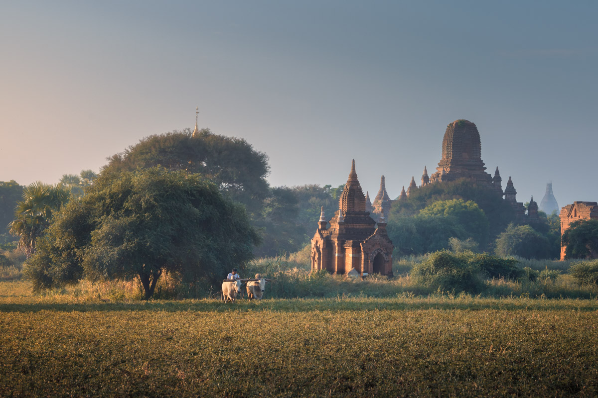 Old Bagan in the Morning, Bagan, Myanmar
