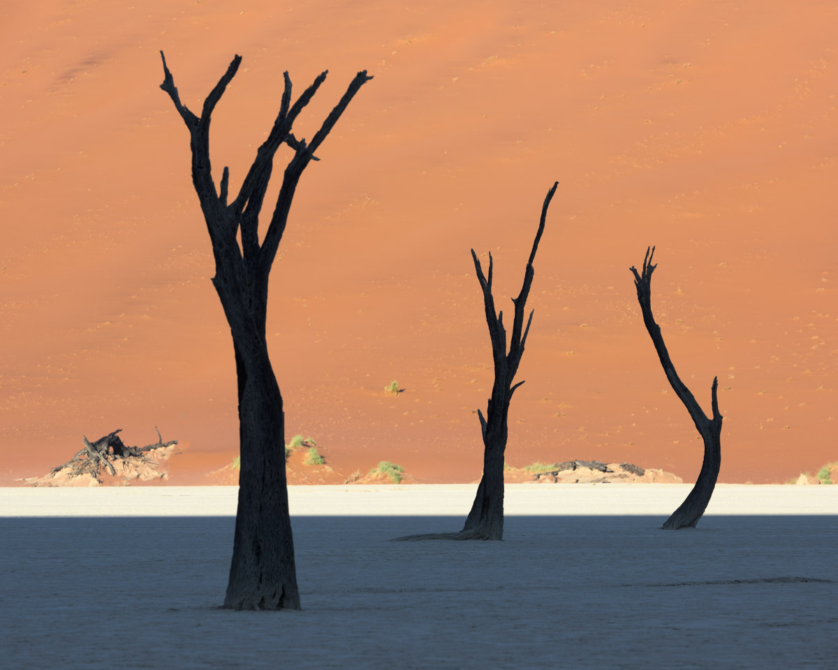 Dead Acacia Forest and Red Dune, Deadvlei, Namibia