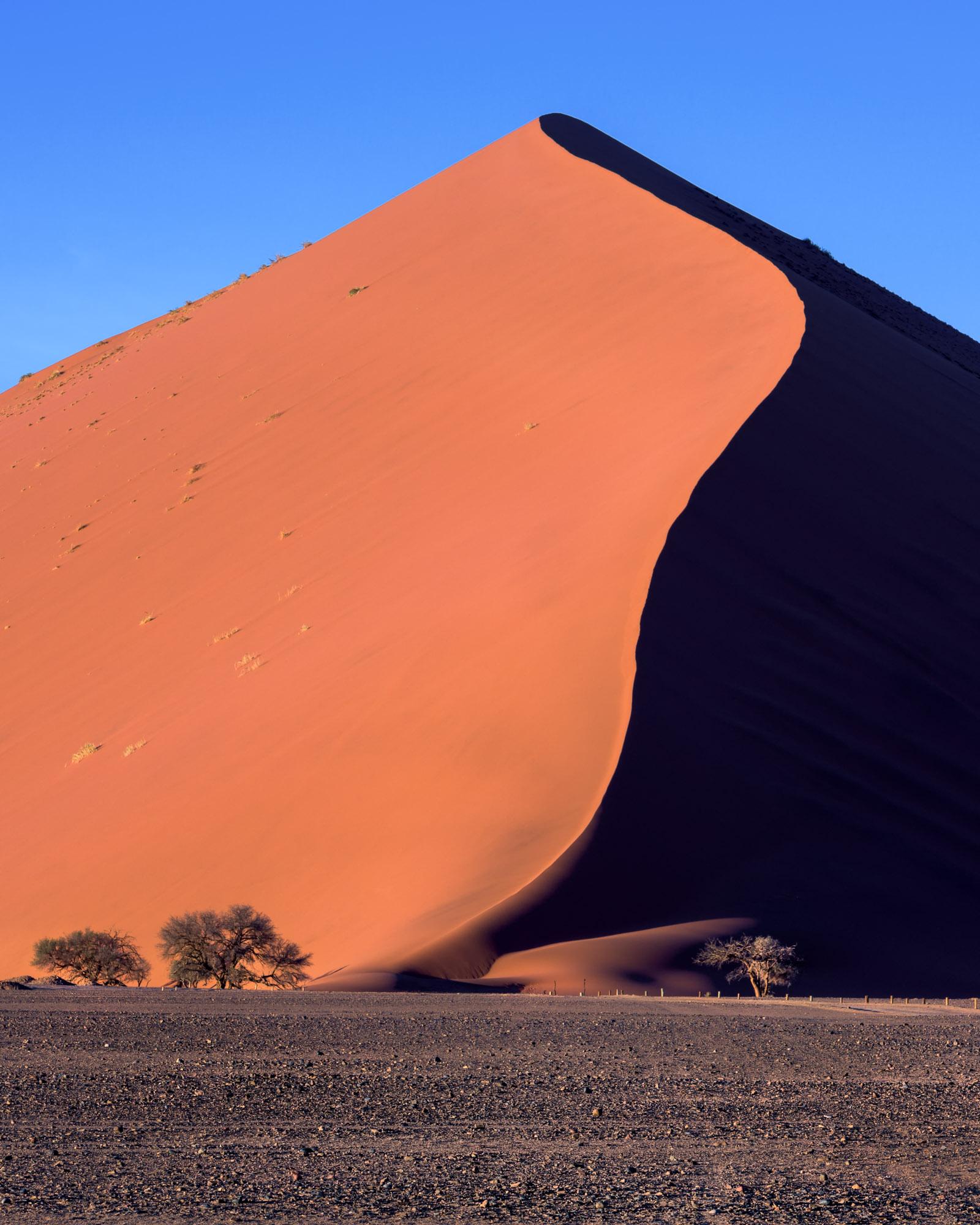 Dune 44, Sossusvlei, Namib-Naukluft Park, Namibia