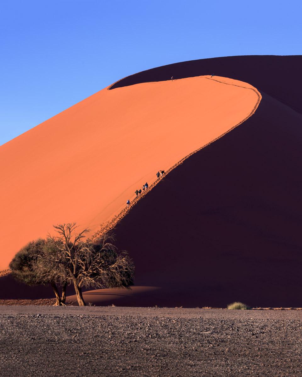 Dune 45, Sossusvlei, Namib-Naukluft Park, Namibia